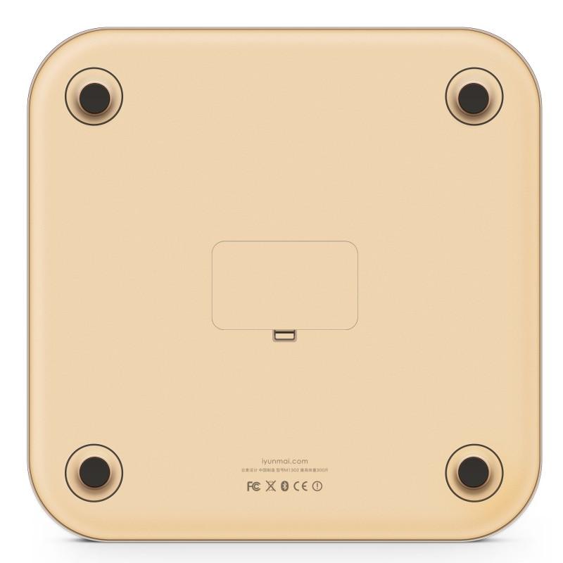 YUNMAI Color 智能10合1體脂磅 - 國際版 (金色)